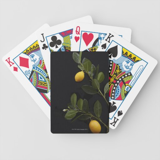Lemons still on their Branch Bicycle Playing Cards