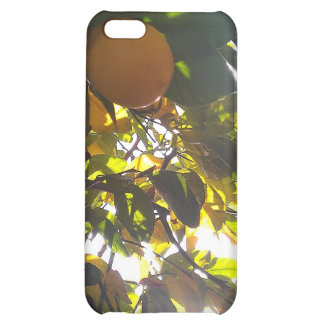 lemons sun iPhone 5C cases