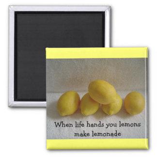 "Lemons With 'Life"" saying Refrigerator Magnet"