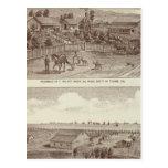 Lemoore, Armona ranches 2 Postcards