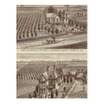 Lemoore, Armona ranches Postcards