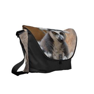 Lemur adorable bolsas de mensajeria