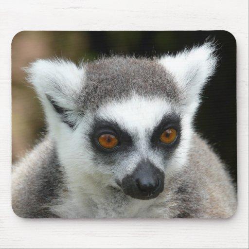 Lemur Alfombrillas De Ratón