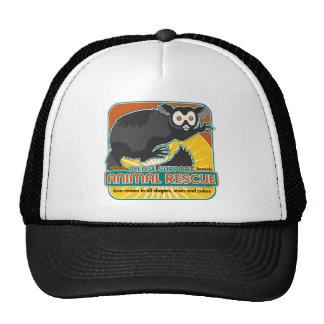 Lemur animal del rescate gorros