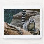 Lemur atado anillo alfombrillas de raton