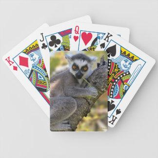 Lemur atado anillo del bebé baraja de cartas