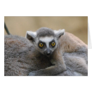 Lemur Baby  Greeting Card