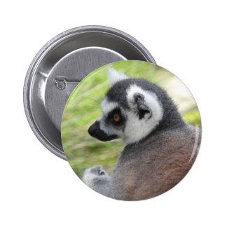 Lemur Badge Pinback Button