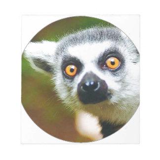 """""""Lemur """" Blocs"""
