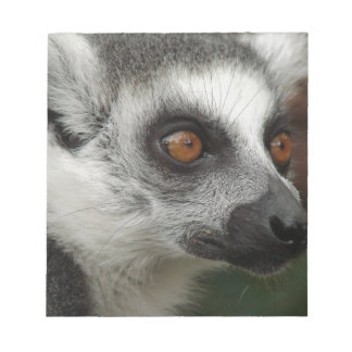 Lemur Blocs De Notas