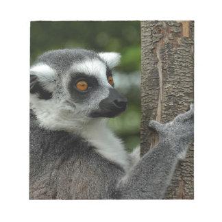 Lemur Libretas Para Notas
