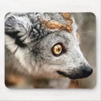 Lemur coronado hembra tapetes de ratones