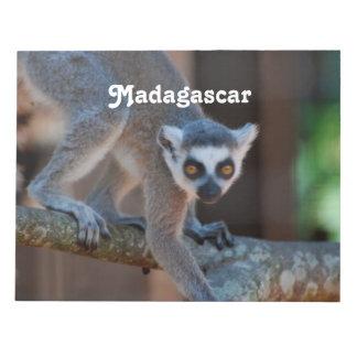 Lemur de Madagascar Libretas Para Notas