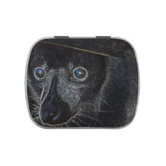 Lemur de neón