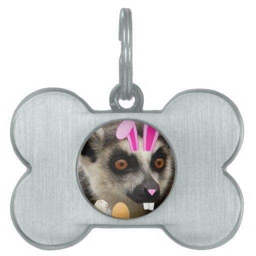 Lemur de Pascua Placa Mascota