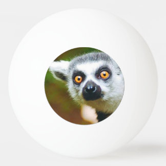 """""""Lemur"""" design gifts and products Ping-Pong Ball"""