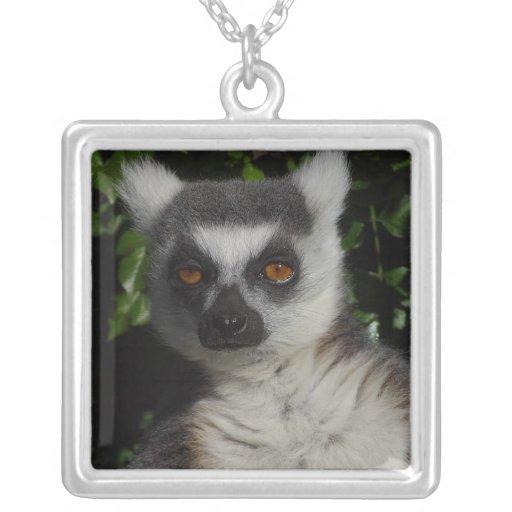 Lemur el mirar fijamente colgante cuadrado
