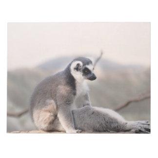 Lemur en Madagascar Blocs De Notas