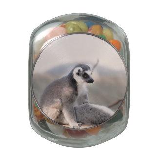 Lemur en Madagascar Jarras De Cristal