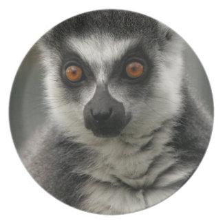 Lemur Face Plate