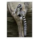 Lemur Greeting Cards