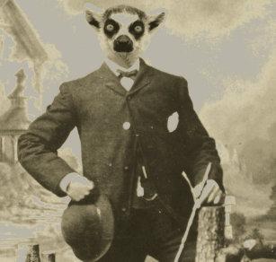 [Image: lemur_guy_baby_t_shirt-rd4c20c2482ee47c1...pe=content]