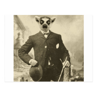 lemur guy postcard