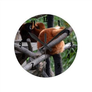 Lemur hinchado rojo que cuelga en la visión reloj redondo mediano