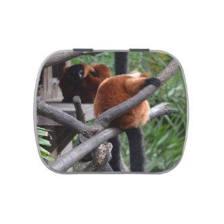 Lemur hinchado rojo que cuelga en la visión traser latas de caramelos