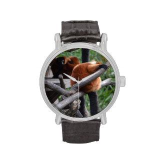 Lemur hinchado rojo que cuelga en la visión traser reloj de mano