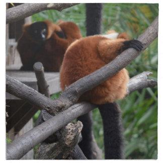 Lemur hinchado rojo que cuelga en la visión traser servilletas