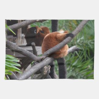 Lemur hinchado rojo que cuelga en la visión traser toalla de mano