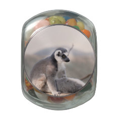 Lemur in Madagascar Jelly Belly Candy Jars at Zazzle