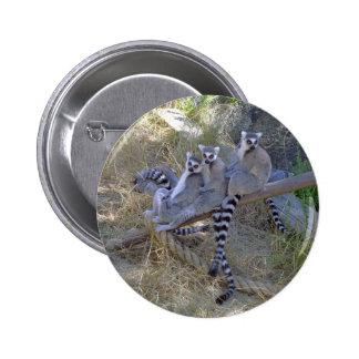 Lemur Line Button