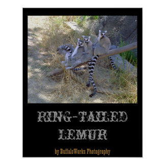 Lemur Line Poster