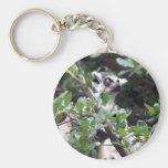 Lemur Llavero Personalizado