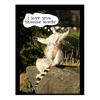 Lemur Love You This Much Funny  Fathers Day Postcard