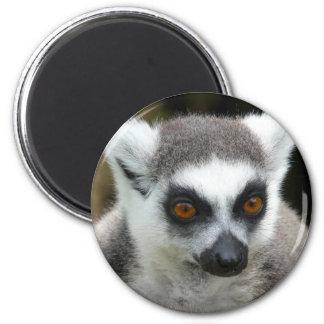 Lemur 2 Inch Round Magnet