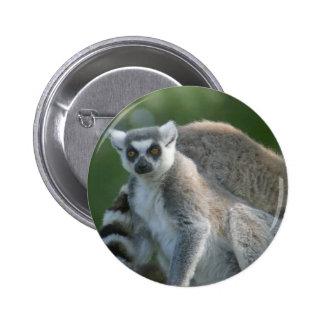 Lemur Mammal Button