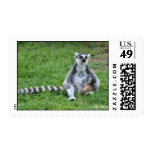 Lemur Momma Postage Stamps