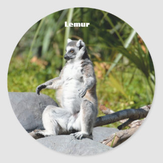 Lemur Monkey Classic Round Sticker