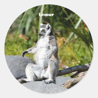 Lemur Monkey Classic Round Sticker
