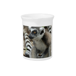 Lemur Monkey Pitcher