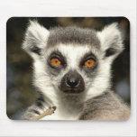 Lemur Mousepad Tapete De Raton