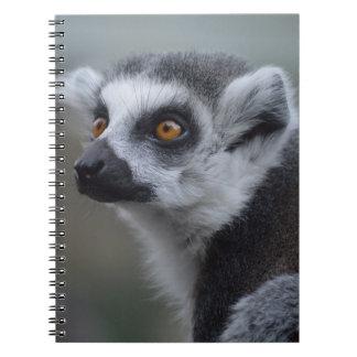 Lemur Note Book