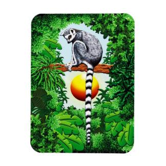 Lemur of Madagascar Rectangular Photo Magnet