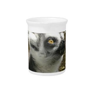Lemur Photo Pitcher