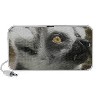 Lemur Photo Speakers