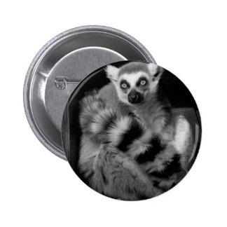 lemur pin redondo de 2 pulgadas