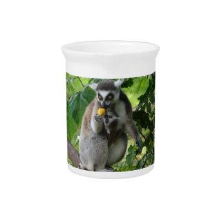 Lemur Pitcher